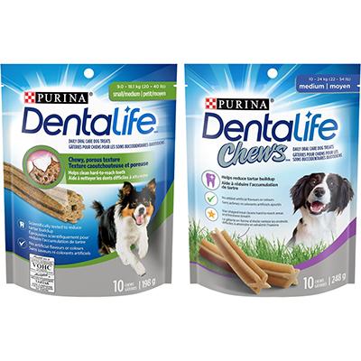 Obtenez Le Coupon Rabais Dentalife Gratuit A Imprimer De 2$