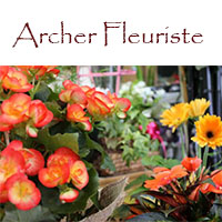 Archer Fleuriste - Promotions & Rabais - Fleuristes