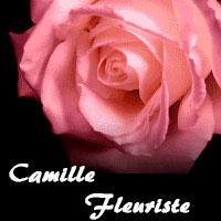 Camille Fleuriste - Promotions & Rabais - Boutiques Cadeaux à Montréal