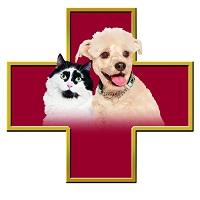 Clinique Vétérinaire Animosoins - Promotions & Rabais pour Vétérinaire