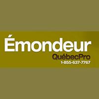 Émondeur Québec Pro - Promotions & Rabais - Émondage Et Élagage D'Arbre