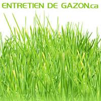 Entretien De Gazon - Promotions & Rabais pour Entretien Et Traitement De Pelouses