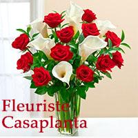 Fleuriste Casaplanta - Promotions & Rabais à Montréal - Fleuristes