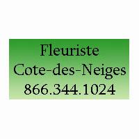 Fleuriste Côte-Des-Neiges : Site Web, Localisateur Des Adresses Et Heures D'Ouverture