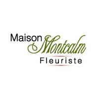 Fleuriste Maison Montcalm : Site Web, Localisateur Des Adresses Et Heures D'Ouverture