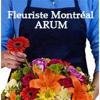 Fleuriste Montréal ARUM - Promotions & Rabais - Fleuristes à Montréal