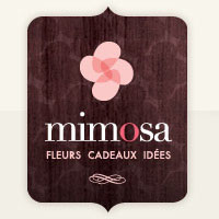 Mimosa Fleur : Site Web, Localisateur Des Adresses Et Heures D'Ouverture