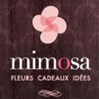 Mimosa Fleurs Et Cadeaux : Site Web, Localisateur Des Adresses Et Heures D'Ouverture