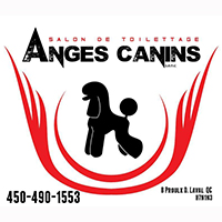Toilettage Anges Canins - Promotions & Rabais - Animaux à Laval