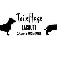 Commandez En Ligne Sur Toilettage Lachute