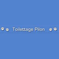 Toilettage Pilon : Site Web, Localisateur Des Adresses Et Heures D'Ouverture