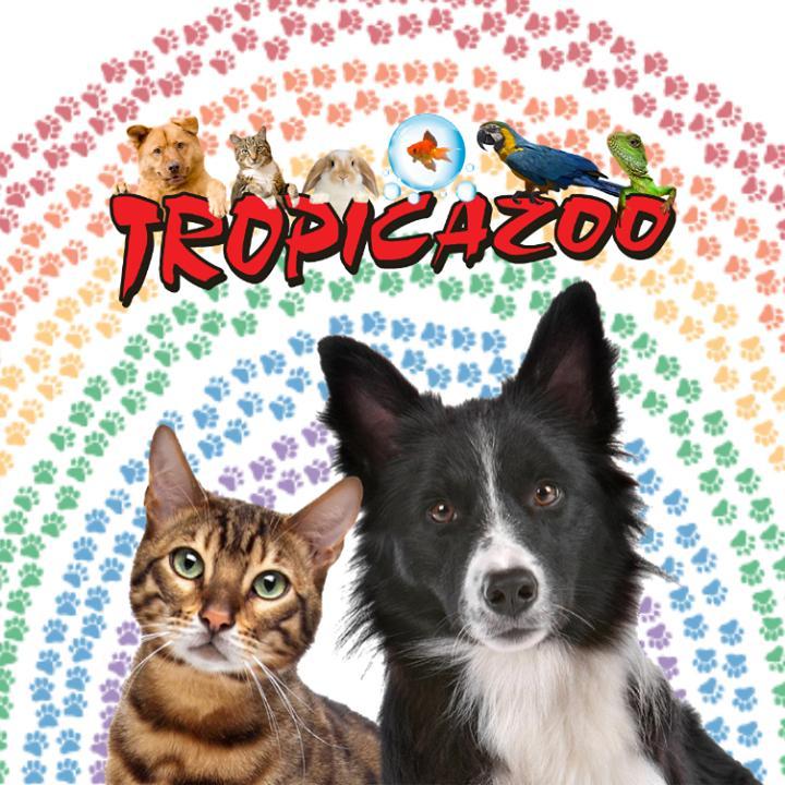 Tropicazoo - Promotions & Rabais pour Poissons
