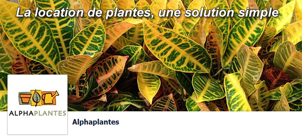 Alpha Plantes Location
