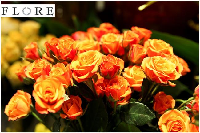 Flore Fleurs, événements, Objets, Curiosités