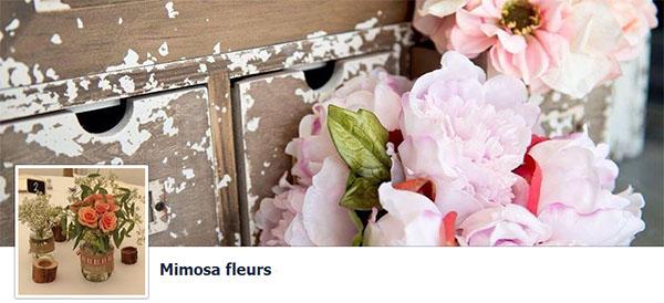Mimosa Fleurs
