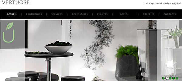 Vertuose Plantes Location Entretient
